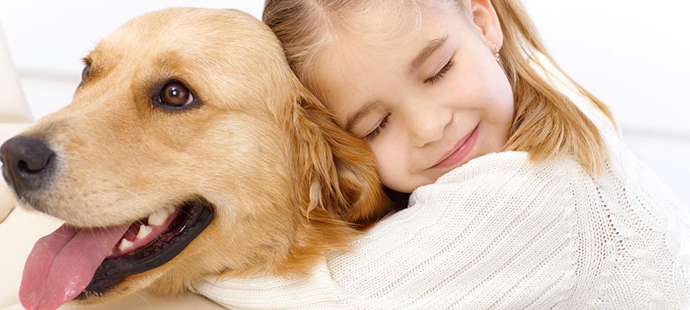 Feeling Stressed ? How Pets Lift Our Mood & Help Us Heal   keshdigital.com