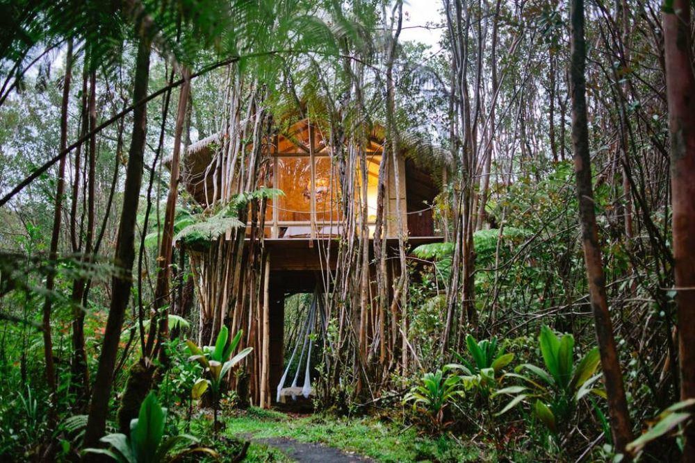 8 Luxury Airbnb Tree Houses You Can Actually Stay In   Tree Houses houses for rent houses for rent near me apartments for rent Tree Houses You Can Actually Rent on Airbnb - YouTube 32 Amazing Treehouses You Can Rent in 2020 - Best