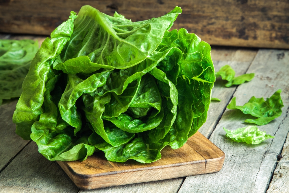 8 Things That Happen To Your Body When You Eat Romaine Lettuce Every Day | Life360 Tips